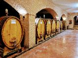 Winery Visits with Coco Tours to Italy